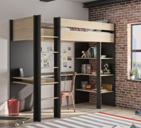 Gami Duplex Highsleeper Bed with Shelves and Desk